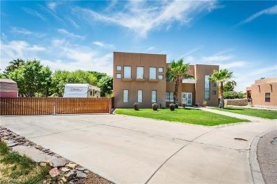 El Paso Single Family Home For Sale: 654 Vera Court