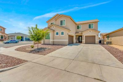 Single Family Home For Sale: 14474 Vincent Kalel Place