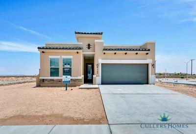El Paso Single Family Home For Sale: 1029 Shields Street