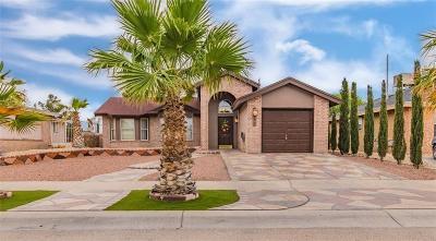 Single Family Home For Sale: 453 Las Palomas Drive