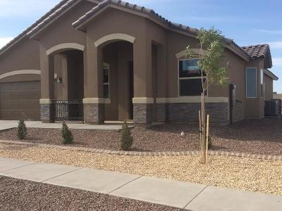 El Paso Single Family Home For Sale: 12442 Stansbury Drive