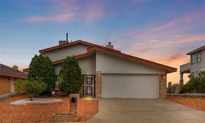 El Paso Single Family Home For Sale: 6848 Ridge Top Drive