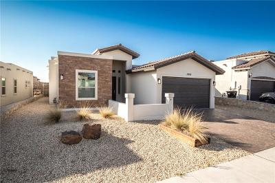 Horizon City Single Family Home For Sale: 12291 Houghton Springs