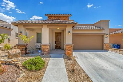 El Paso Single Family Home For Sale: 7324 Golden Sage Drive