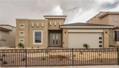 El Paso Single Family Home For Sale: 304 Manzanita Drive