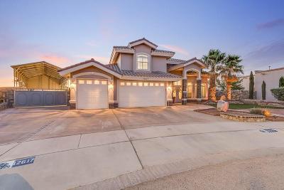 El Paso Single Family Home For Sale: 12617 Tierra Clara Road