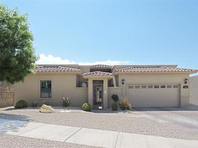 El Paso Single Family Home For Sale: 7362 Brays Landing Drive