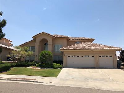 El Paso Single Family Home For Sale: 6304 La Posta Drive
