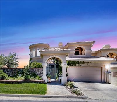 El Paso Single Family Home For Sale: 46 Sun Point Lane