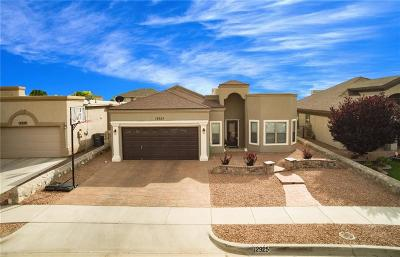Single Family Home For Sale: 12925 Hidden Grove Drive