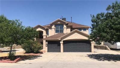 Socorro Single Family Home For Sale: 505 Estancia Clara Lane