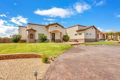 El Paso Single Family Home For Sale: 6091 Via De Los Arboles