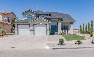Single Family Home For Sale: 416 Desert Dandelion Street