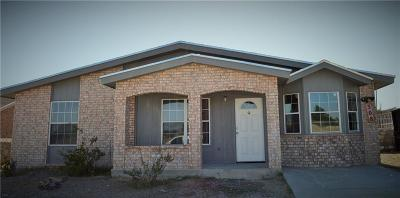 Horizon City Single Family Home For Sale: 308 Las Colinas Drive