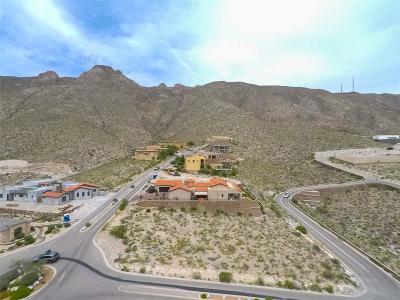 El Paso Single Family Home For Sale: 428 San Clemente Drive