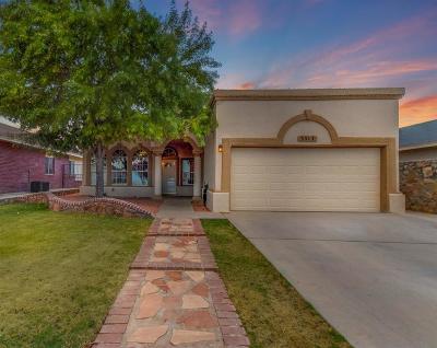 El Paso Single Family Home For Sale: 3317 Mike Godwin Drive