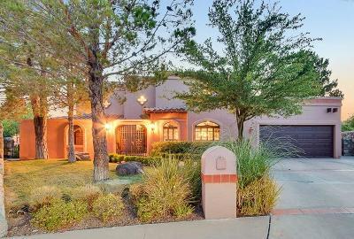 El Paso Single Family Home For Sale: 7221 Meriden Lane