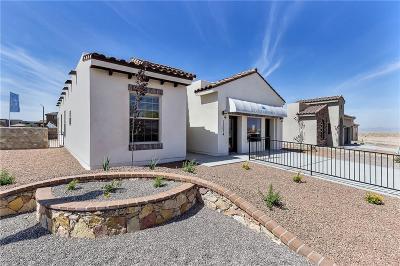 El Paso Single Family Home For Sale: 1077 Gaitan Street