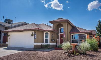 El Paso Single Family Home For Sale: 5537 Rick Husband Drive