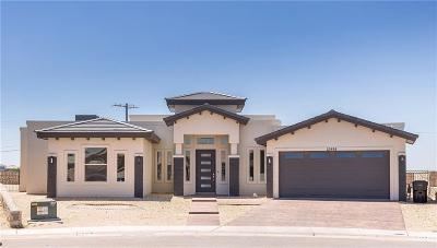 El Paso Single Family Home For Sale: 12498 Chamberlain Drive