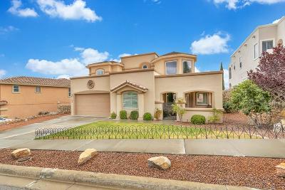 El Paso Single Family Home For Sale: 1605 Playa Del Sol Street
