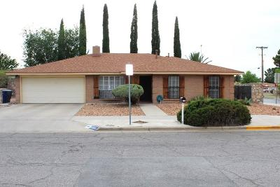 El Paso Single Family Home For Sale: 11000 Tom Shaw Drive