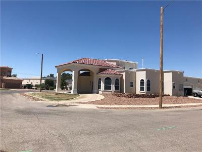 El Paso Single Family Home For Sale: 711 Maxie Marie