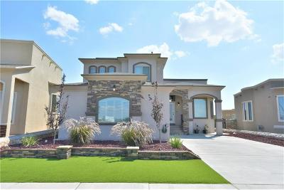 El Paso Single Family Home For Sale: 12504 Mine That Bird Drive