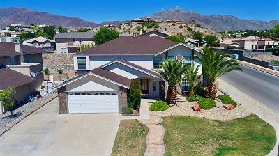 El Paso Single Family Home For Sale: 1316 Trail Ridge Drive