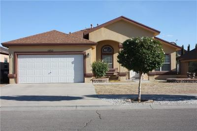 Horizon City Single Family Home For Sale: 14312 Desert Shadow Drive