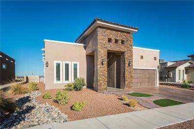Horizon City Single Family Home For Sale: 817 Carbine Drive