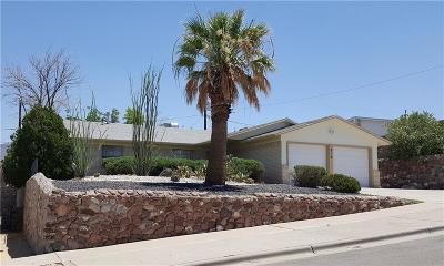 El Paso Single Family Home For Sale: 219 Three Rivers Drive