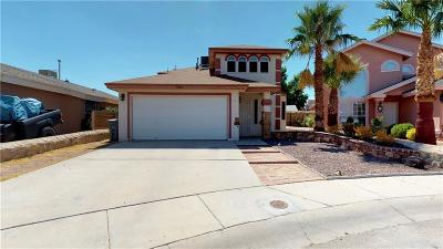 El Paso Single Family Home For Sale: 3821 Tierra Joya Place