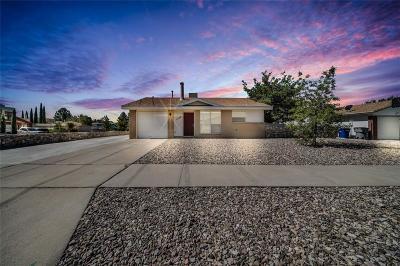 El Paso Single Family Home For Sale: 7732 Tuscarora Avenue