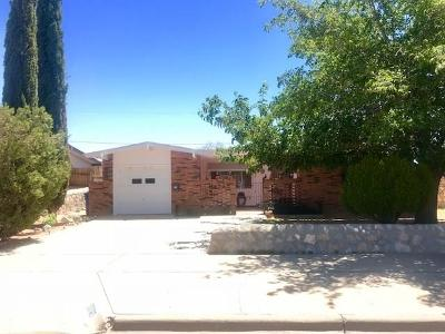 El Paso Single Family Home For Sale: 10060 Kirwood Street