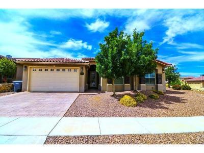 Single Family Home For Sale: 7382 Gulf Creek Drive