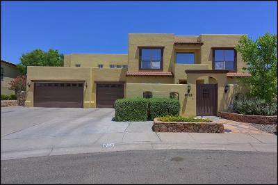 El Paso Single Family Home For Sale: 6413 Calle Placido Drive