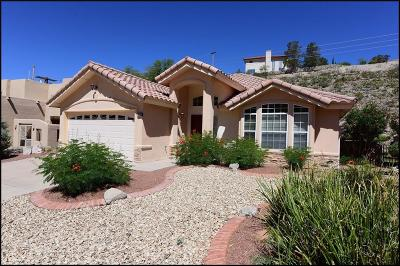 El Paso Single Family Home For Sale: 5653 Burning Tree Drive
