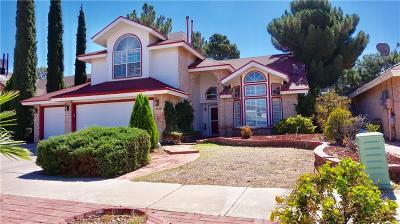 El Paso Single Family Home For Sale: 2020 Desert Sun Drive