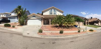 El Paso Single Family Home For Sale: 7036 Luz De Espejo Drive