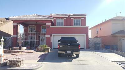 El Paso Single Family Home For Sale: 12208 Kira Christel Ln Lane