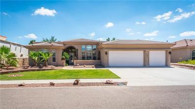 Single Family Home For Sale: 732 Kapriz Avenue
