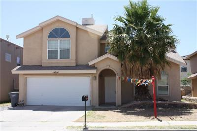 El Paso Single Family Home For Sale: 10801 Walden Pond Street