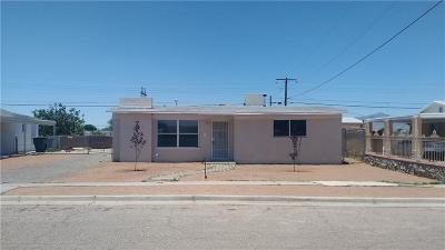El Paso Single Family Home For Sale: 317 Ben Swain Drive