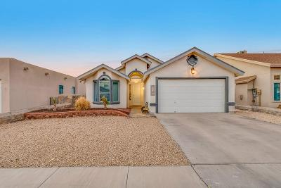 Horizon City Single Family Home For Sale: 12517 Paseo Azul Drive