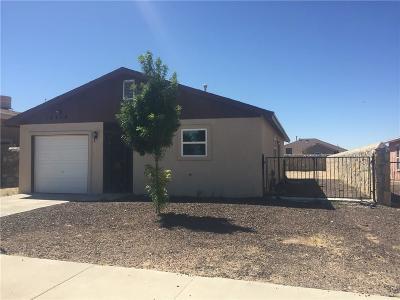 Single Family Home For Sale: 14420 Teichelkamp Drive