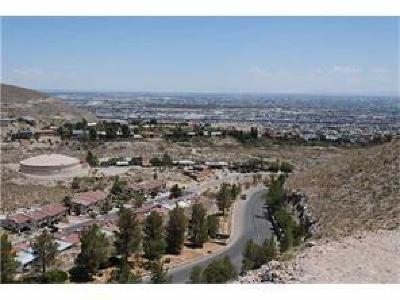 El Paso Single Family Home For Sale: 8 Lone Crest Drive