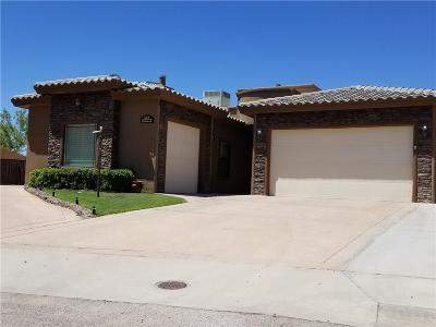 Horizon City Single Family Home For Sale: 378 Emerald Cloud Lane