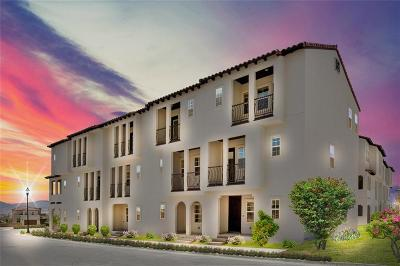 El Paso Single Family Home For Sale: 328 Vin Almoradi Court