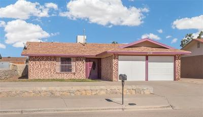 El Paso Single Family Home For Sale: 9309 Milpas Lane